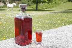 Bottle of Patxaran and a shot glass. Bottle of Patxaran and a shot glass, outdoors. Patxaran is a sloe-flavoured liqueur drunk in the Basque Country and Spain Stock Photo