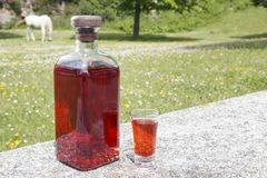 Bottle of Patxaran and a shot glass. Bottle of Patxaran and a shot glass, outdoors. Patxaran is a sloe-flavoured liqueur drunk in the Basque Country and Spain Royalty Free Stock Photography