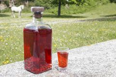 Bottle of Patxaran and a shot glass. Bottle of Patxaran and a shot glass, outdoors. Patxaran is a sloe-flavoured liqueur drunk in the Basque Country and Spain Stock Image