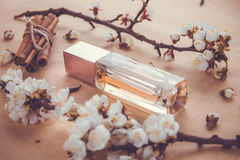 Bottle of perfume with ingredients royalty free stock photo