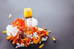 Bottle of perfume with ingredients. On black background Royalty Free Stock Image