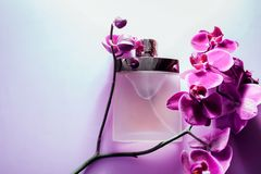 Bottle of perfume with orchid. Bottle of perfume with violet orchid on purple background royalty free stock image
