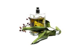 Bottle of perfume, personal accessory, aromatic fragrant odor. The unique scent of the flowers on your side most of the day Stock Images