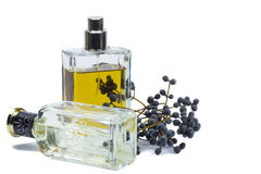 Bottle of perfume, personal accessory, aromatic fragrant odor. The unique scent of the flowers on your side most of the day Royalty Free Stock Image
