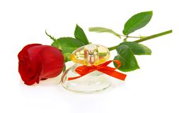Bottle of perfume with red ribbon and rose Royalty Free Stock Photos