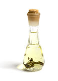 Bottle of potion  Stock Photography