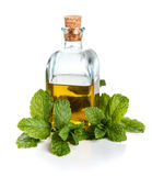 Olive oil with mint Royalty Free Stock Photography