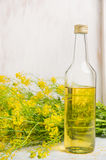 Bottle of rapeseed oil  with flower of a rape on white wooden background. Bottle of rapeseed oil  with flower of rape on white wooden background Stock Image