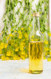 Bottle of rapeseed oil on white wooden table over fresh rape flowers Royalty Free Stock Images