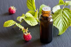 A bottle of raspberry seed oil with fresh raspberries in the bac. A dark bottle of raspberry seed oil with fresh raspberries in the background Stock Photography