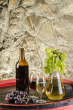 The bottle of red and white wine with glasses and grapes Stock Photography