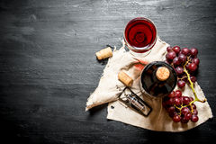 Bottle red wine with bunch grapes on old fabric. Stock Photos