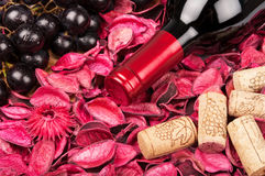 Bottle of red wine on flower petals. Background stock photo