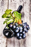 Bottle of red wine with fresh grape and grapevine Royalty Free Stock Photo