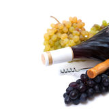 Bottle of red wine and freshly harvested grape Royalty Free Stock Photos
