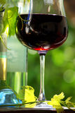 Bottle of red wine with glass. Stock Images