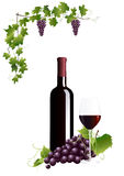 Bottle with red wine Stock Image
