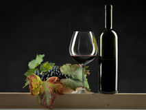 Bottle red wine, glass, grapes black background Stock Image