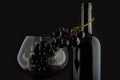 Bottle with red wine and glass and grapes II Stock Photography