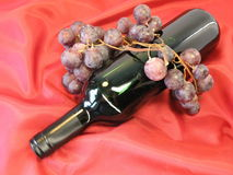 Bottle of red wine and grape stock image
