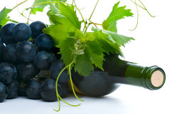 Bottle of red wine with grapeleaf Stock Photo