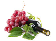 Bottle of red wine with grapes Stock Images