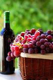 Bottle of red wine and  grapes Royalty Free Stock Images