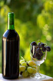 Bottle of red wine and grapes. Stock Images