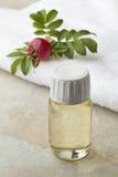 Bottle rose hip oil Stock Images
