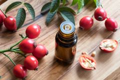 A bottle of rose hip seed oil on a wooden table Royalty Free Stock Photos