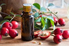 A bottle of rose hip seed oil on a wooden table. With fresh rose hips in the background Stock Photography
