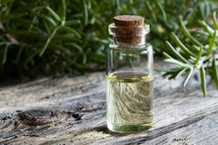 A bottle of rosemary essential oil with rosemary twigs Royalty Free Stock Images
