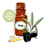 Bottle of sage essential oil with dropper. Vector illustration of sage plant and bottle of essential oil for cosmetic, perfume and herbal medicine. Label for Stock Photos