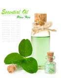 Bottle of scented oil and leaf clover in drops of water Stock Images