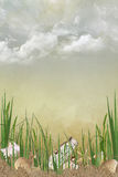 Bottle and seashells in grass and sand Royalty Free Stock Image