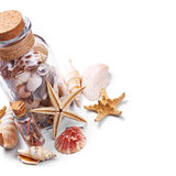 Bottle of seashells Royalty Free Stock Photos