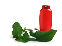 Bottle of shampoo and green leaves Stock Images