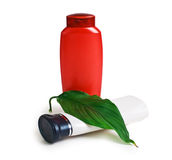 Bottle of shampoo and green leaves Royalty Free Stock Image