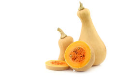 Bottle shaped butternut pumpkin and a cut one Stock Photography