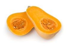 Bottle shaped butternut pumpkin Stock Images