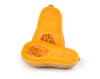 Bottle shaped butternut pumpkin Stock Image