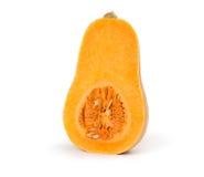 Bottle shaped butternut pumpkin Royalty Free Stock Photo