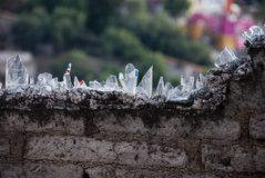 Bottle-shards on a wall Stock Images