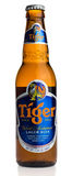 Bottle of Singaporese Tiger beer Royalty Free Stock Images