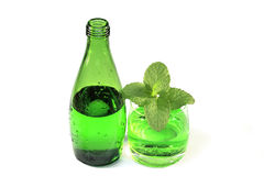 Bottle of sparkling mineral water with tarragon and lemon balm Stock Photography