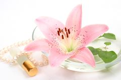 Bottle of spirits and pink lily Stock Images