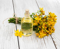 Bottle with St. John`s wort extract. On the wooden table Stock Photo