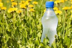 Bottle in a summer meadow. Stock Photo