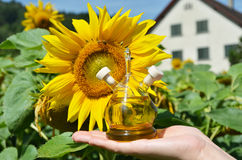 Bottle of sunflower oil royalty free stock photography
