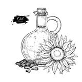 Bottle of sunflower oil with flower and heap of seed. Vector Hand drawn illustration. Glass pitcher Stock Photos